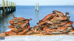 Ocean Odyssey Fresh Crabs