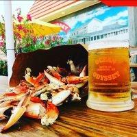 Crab claws and mug of beer
